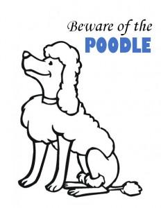 Poodle ssl 3.0 beware