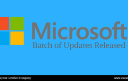 Microsoft has released patch updates to vulnerability